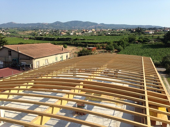 acoperisuri lemn