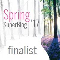finalist superblog