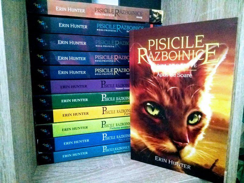 Pisicile Războinice 12 - Apus de soare de Erin Hunter, recenzie