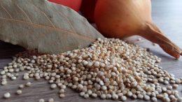 proprietati quinoa