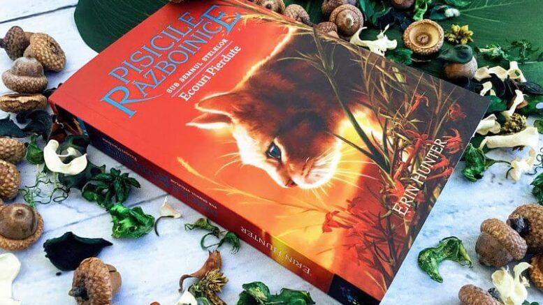 Pisicile războinice Vol.20: Ecouri pierdute, recenzie